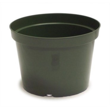 Injection Molded Containers | BFG Supply