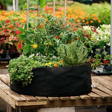 Flower Pots. Flower Pots. Indoor Planters