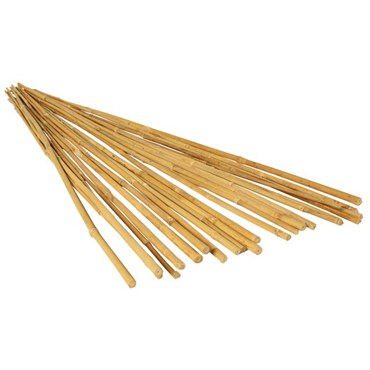 Bamboo Trellises, Stakes & Supports