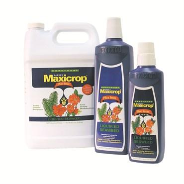Indoor gardening bfg supply for Indoor gardening nutrients