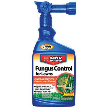 Lawn Fungicides