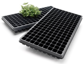 Propagation & Plug Trays