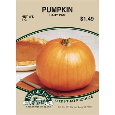Pumpkin, Baby Pam 4 Gram   BFG Supply