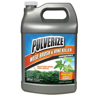 Messina Pulverize 1gal Conc Weed Brush Vine Killer Bfg Supply
