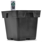 BELDEN PLASTICS® JUMBO 5.25IN SQUARE POT WITH TAG SLOT - BLACK (200/CS)(48CS/PL)
