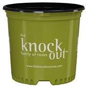 Nursery Supplies 3Gl Knock Out Rose Container - 71 Per Case