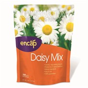 DAISY MIX PATCH 6/CS
