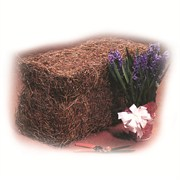Baled Pine Straw Covers 25sqf 48/Pallet