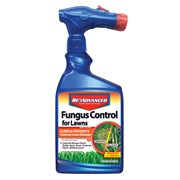 Bayer 32oz Fungus Contro Lawns RTS Conc