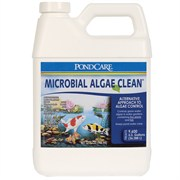 PONDCARE 269G MICROBIAL ALGAE CLEAN, 32-OUNCE