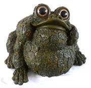 Mcarr Ralph - XXLarge - Mossy Brown (1/cs) EA Toad Collection