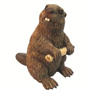 Mcarr Beaver Medium (8/cs) EA
