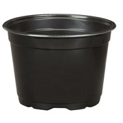 DLN 17.00 CM EURO POT COEX SHORT BLK 300/CS 32CS/P