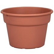 DLN 08.00 COLOR POT TL   CL 58/CS 60CS/PL
