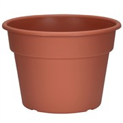 DLN 10.00 COLOR POT 1      CL 58/CS 32CS/PL