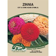 Zinnia, Cut & Come Again 590 Mg