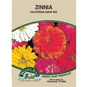 Zinnia, Cal. Giant Mix 590 Mg Each