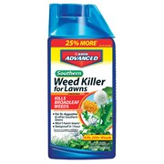 Bayer 64pc 32oz Southern Weed Killer Conc Display