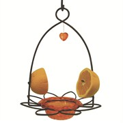 Birds Choice Oriole Flower Feeder