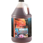 Eco Labs Gal Microbe Lif Bacteria for Watergarden