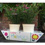"GRNTK Mothers Day Pop Up Card 3.5""-4.5"" Planter"