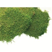 SuperMoss 5# Bulk Sheet Moss Fresh Green