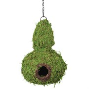 SuperMoss Deco Gourd Bird House