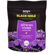 Black Gold African Violet Mix - 8 Qt